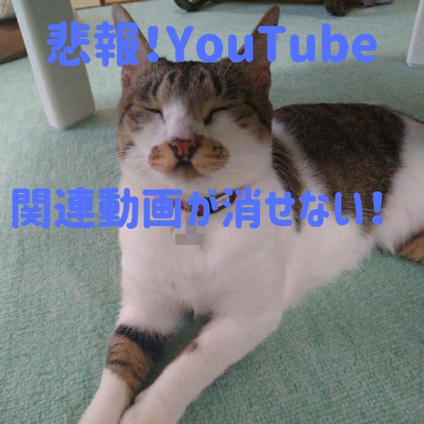 YouTubeの関連動画を消すには?