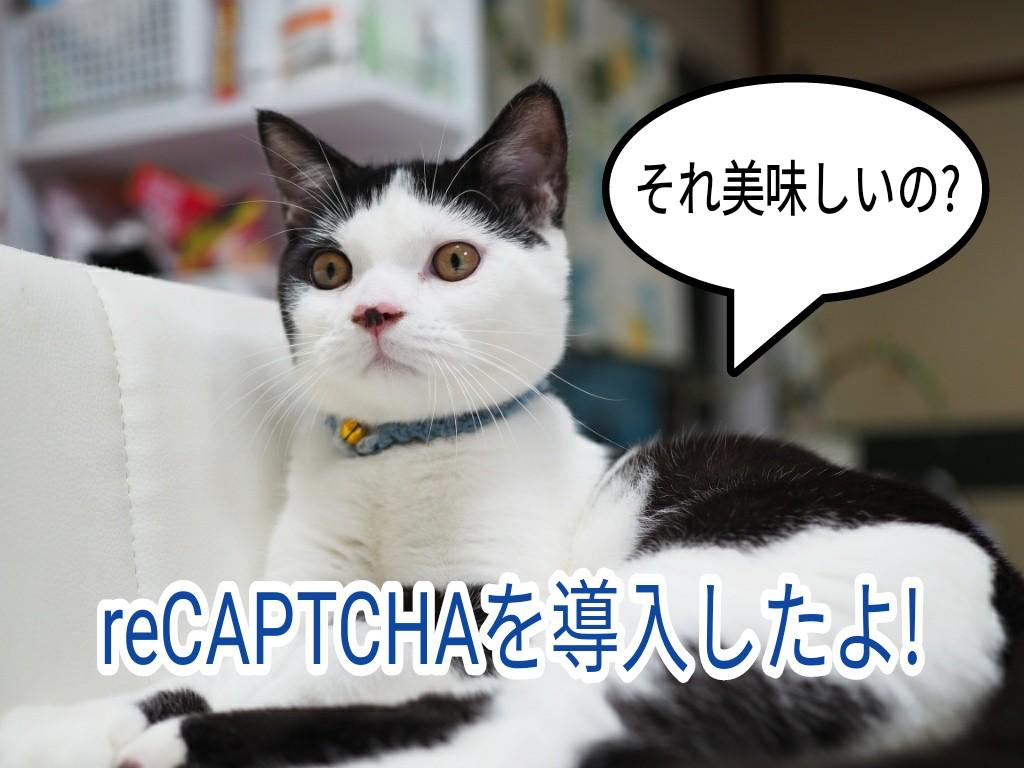 お問い合わせの迷惑メールがゼロに?Invisible reCAPTCHA for   WordPress(インシブルリキャプチャフォーワードプレス)を導入してみたよ!